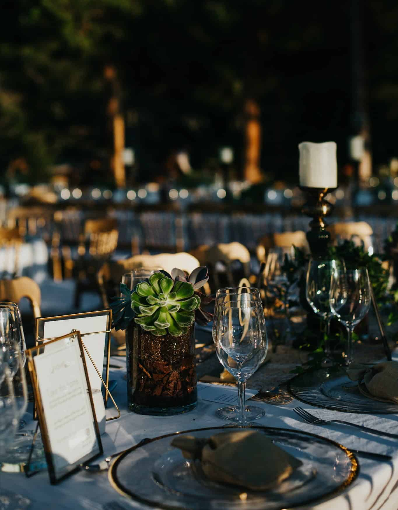wedding table decoration with succulents