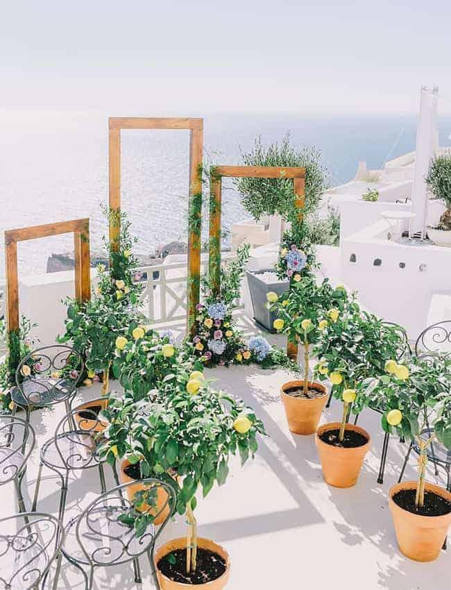 wedding ceremony decoration with lemon trees