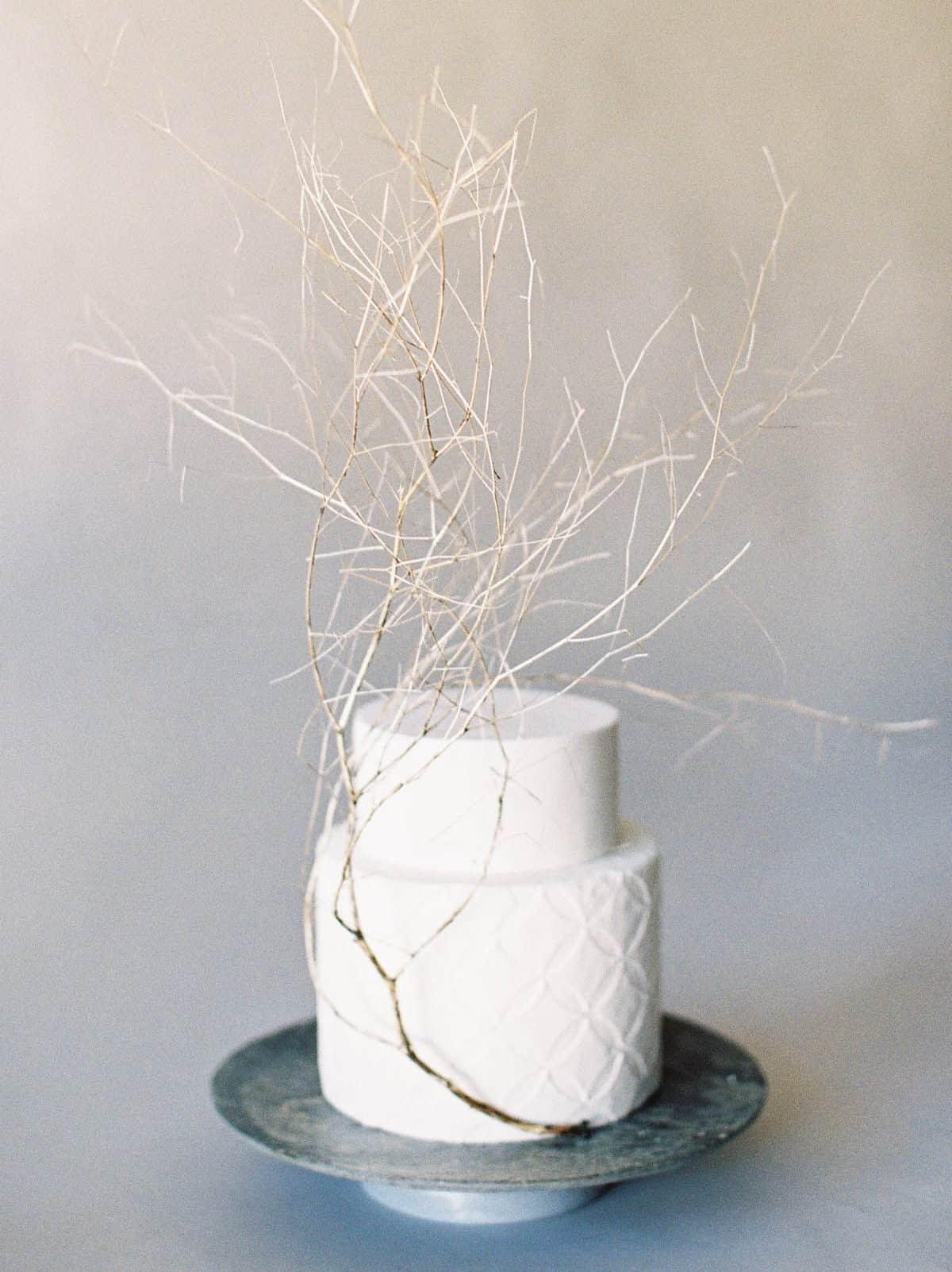 λευκή γαμήλια τούρτα με αποξυραμένα κλαδιά
