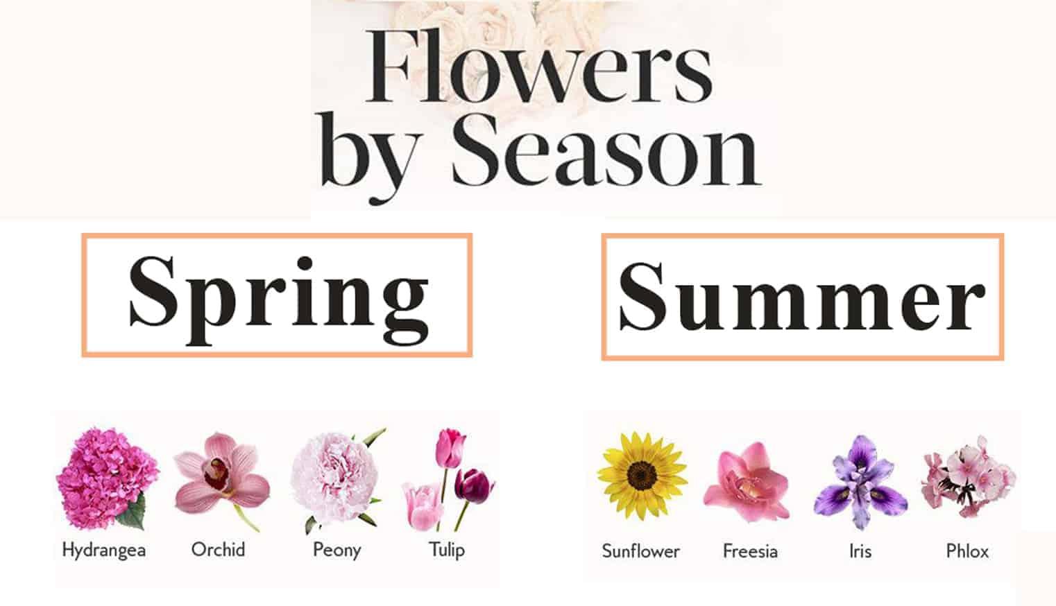 flower guide by season