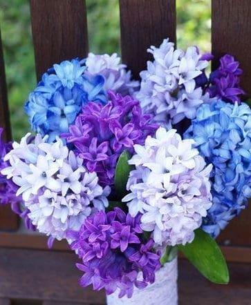 wedding bouquet with hyacinth
