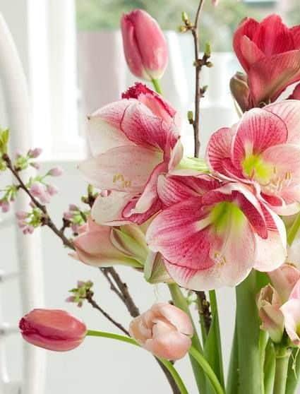 wedding bouquet with amaryllis