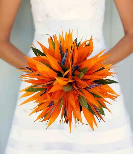 wedding bouquet with bird of paradise