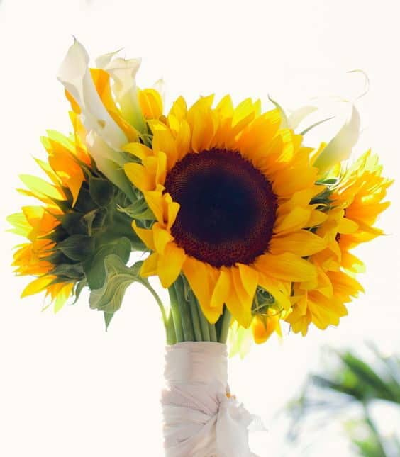 wedding bouquet with sunflowers