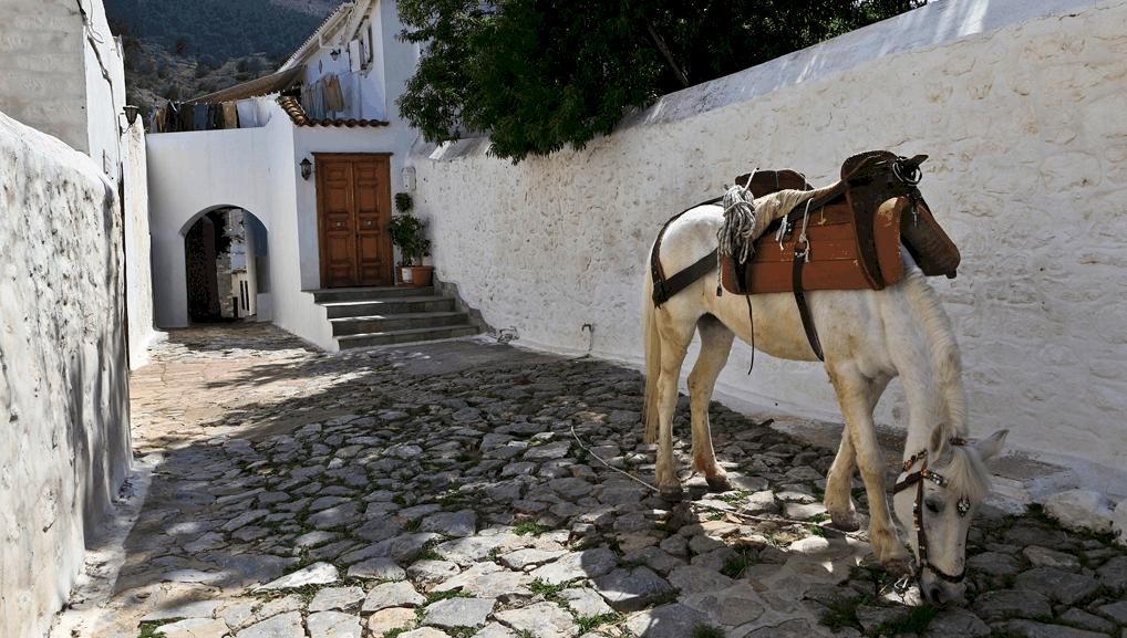 honeymoon Greece Hydra